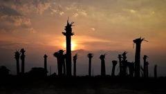 اشک و ماتم خوزستانی ها در مراسم ختم 5 میلیون نخل مرده !