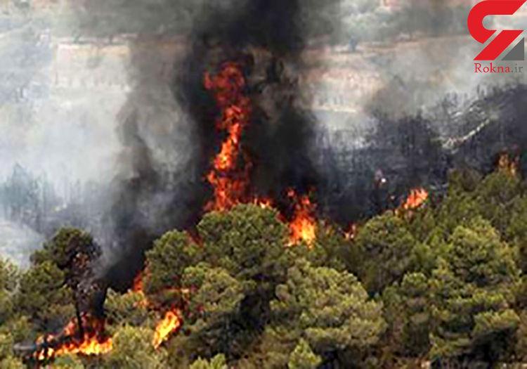 مهار آتش سوزی در جنگلهای چلاو آمل
