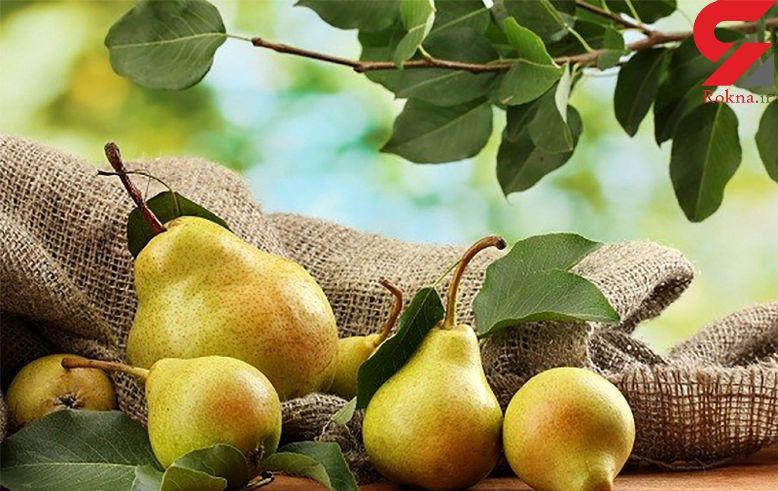 این میوه التیام زخمها را تسریع میکند