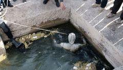 مرگ کودک شیرازی در سقوط در استخر + عکس
