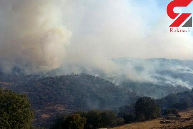 آتش سوزی در 4 هکتار از جنگل های ناودار گیلانغرب
