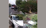 انحراف 206 در بلوار هجرت تهران / راننده خانم مصدوم شد