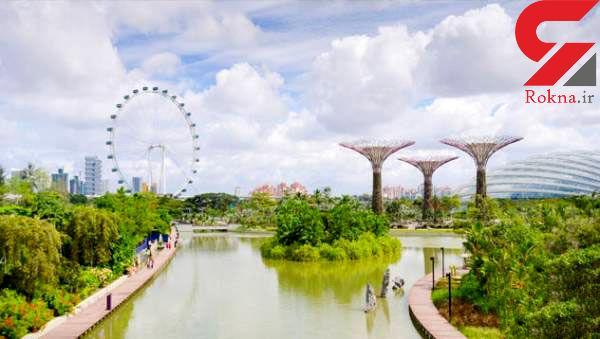 سفری رویایی به پردرخت ترین شهر جهان را تجربه کنید