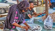 معیشت دستفروشان در ساماندهی عرضه ماهی موردتوجه قرار گیرد