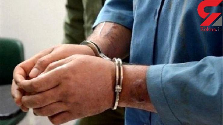 تبهکار بزرگ با 20 میلیارد تومان دزدی در همدان ، گلستان و لرستان دستگیر شد