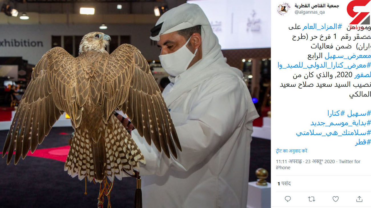 گران ترین بالابان قطر را ببینید + فیلم و عکس