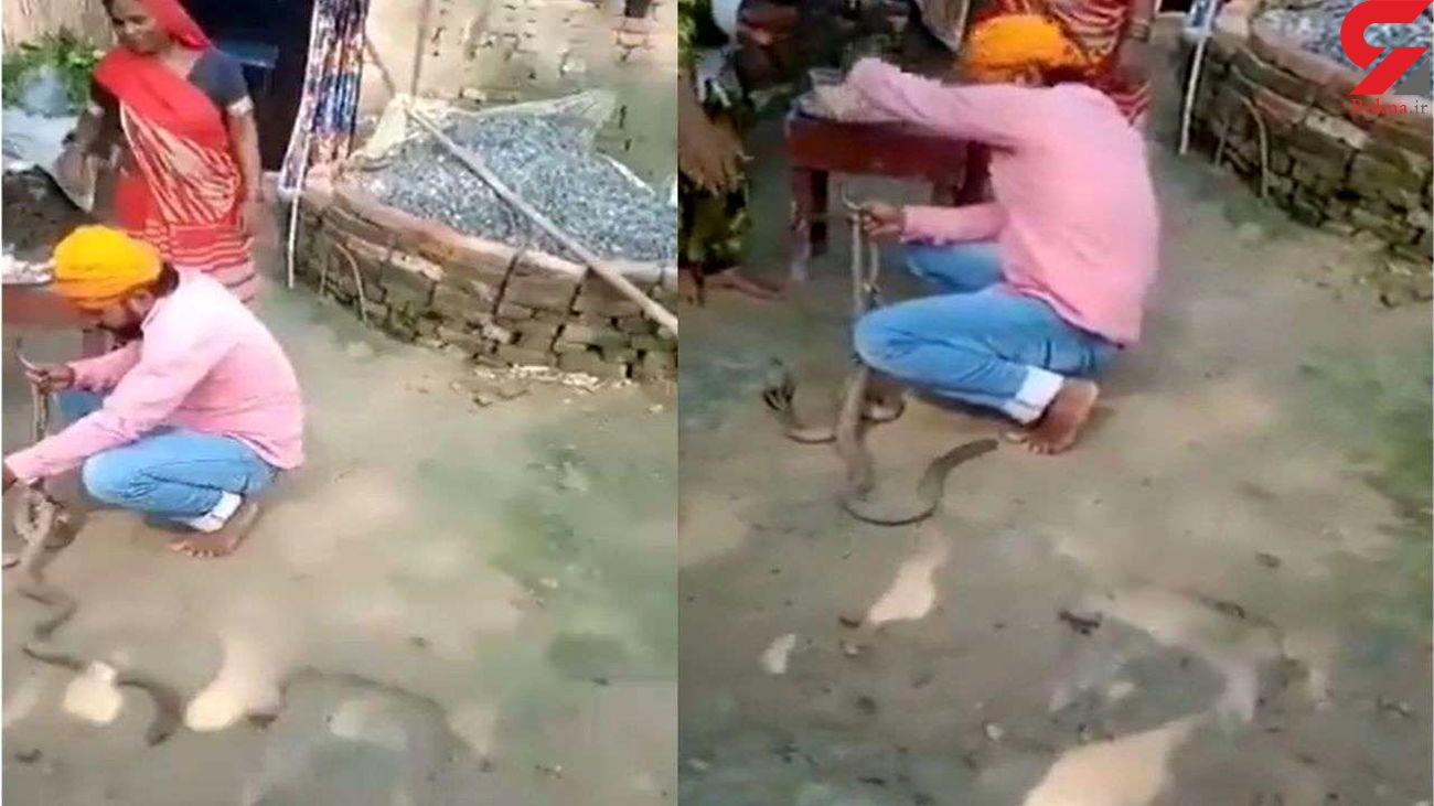 حمله مرگبار مار کبرا در نمایش خیابانی به یک زن / همه فرار کردند + فیلم