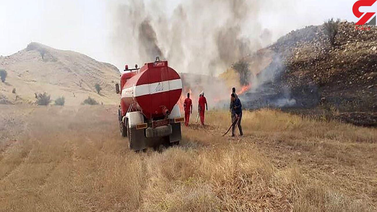 مهار آتشسوزی در منطقه حفاظت شده مسجدسلیمان